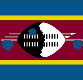 Censorship in Swaziland's Media, 2006